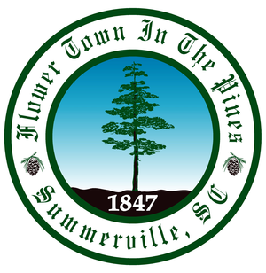 Town of Summerville